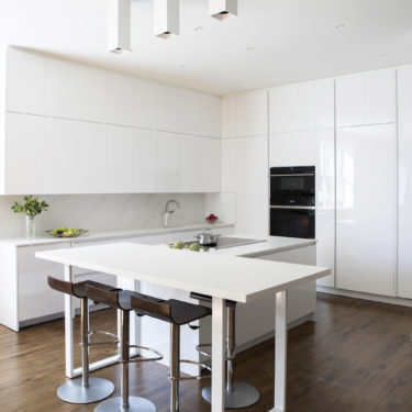 Cesar NYC Modern Custom Kitchen In Tribeca NYC